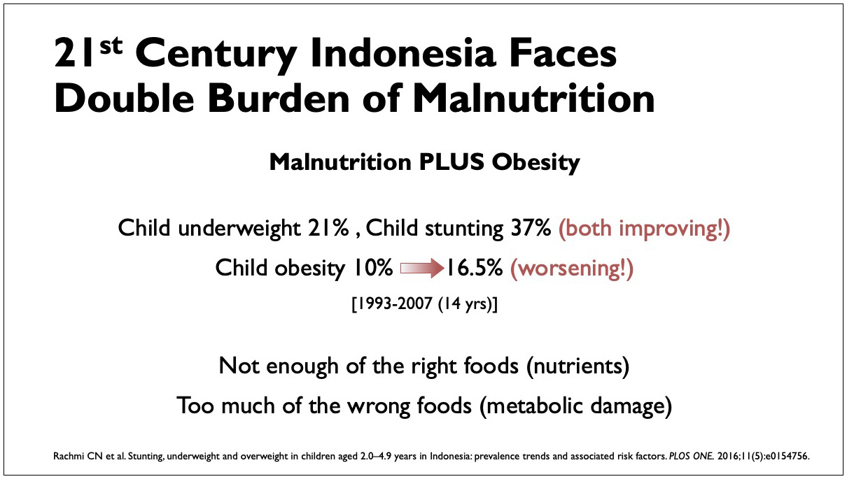 Low Carb Indonesia conference slide - Double Burden of Malnutrition