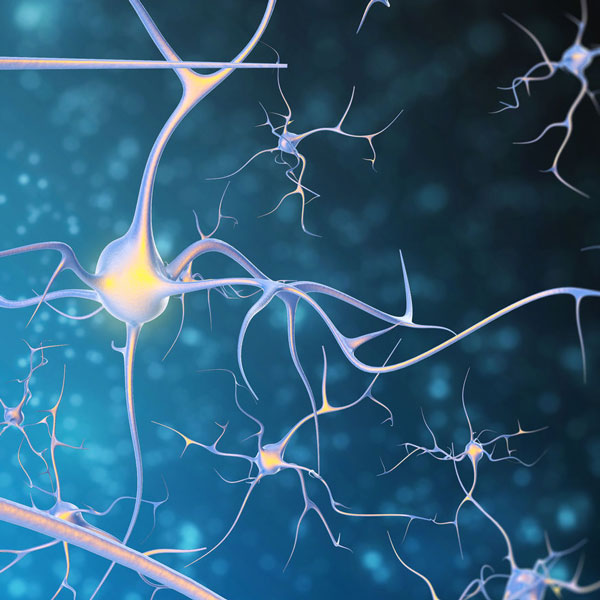 healthy neurons